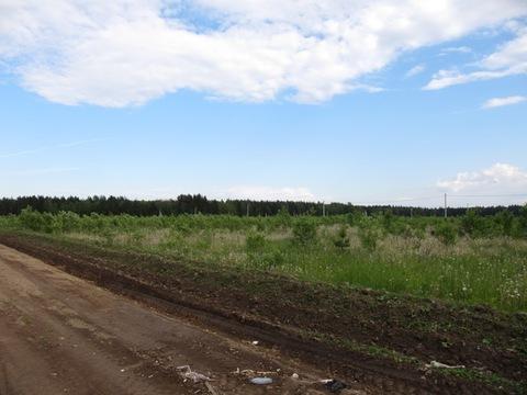 Продается участок 650 соток в Деревне Лизуново - Фото 2