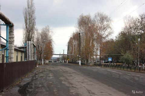 3-комн. квартира в Плавице (Липецкая область) - Фото 4