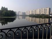 Продам комнату 22 кв.м с з/лоджией в Колпино, Раумская ул, д.19 - Фото 5