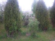 Земельный участок 10 соток в Горках-8. с/т Горки-2. Рублёво - Фото 3