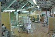 Продажа производства 3332.6 м2, Продажа производственных помещений в Медыни, ID объекта - 900675322 - Фото 11