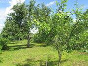Продается земельный участок в с. Протасово Озерского - Фото 2