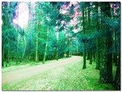 1 500 000 Руб., Уютная дача 45 кв.м. в окружении леса. 6 соток. Кубинка 50 км. от МКАД, Дачи в Кубинке, ID объекта - 502222071 - Фото 7