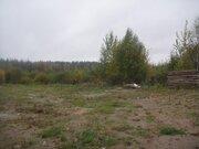 Участок 20с ИЖС в Останкино, свет, газ, вода, выход в лес, 20 км - Фото 3