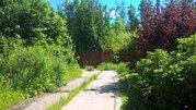 Участок 12 соток с лесными деревьями КИЗ «Зеленая Роща». - Фото 3