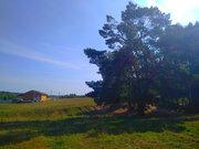 Участок в Голыгино (под прописку) Чеховский район - Фото 4