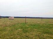 15 соток в д. Ватулино, Рузский район, 95 км от МКАД - Фото 2