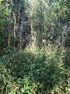 15 соток в д. Новенькое Юрьево-Девичье - Фото 2