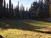 Продажа ровного земельного участка в элитном пригороде Ялты - Фото 5