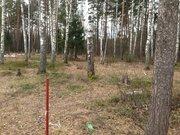 Земельный участок, 24 сотки, ИЖС, г. Черноголовка, мкр. Луговой. - Фото 1
