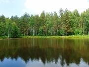 1 300 000 Руб., Рубленная дача в СНТ с озером в окружении леса - 88 км от МКАД, Дачи Ефремово, Киржачский район, ID объекта - 502781304 - Фото 44