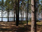 Продам дачный участок рядом с озером «Торбеево» . - Фото 3