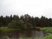 Участок с выходом в р.Волга, д.Нутромо 128 сот, газ, эл-во - Фото 1