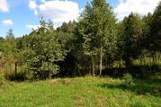 Продается участок у края леса в д. Сергеиково - Фото 1