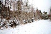 Продажа участка, Приморск, Выборгский район - Фото 3