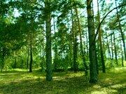 Судогодский р-он, Спас-Купалище с, земля на продажу - Фото 5