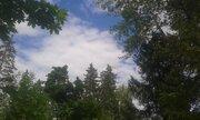 Уникальный лесной участок на берегу в стародачном поселке Мозжинка - Фото 1