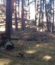 Участок в курортной зоне Архыза, Земельные участки в Карачаевском районе, ID объекта - 201071690 - Фото 2
