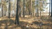 Земельный участок в тихом спокойном месте для релакса - Фото 3