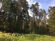 Прилесной участок в обжитом СНТ на Николиной горе - Фото 1