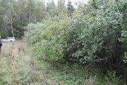 Продается земельный участок 8 соток, рядом с д. Степково. - Фото 5