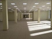 Сдается помещение 470,5 м2 на 1этаже в тк Русская деревня - Фото 3