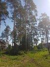 Земельные участки, Золотой Карп (горный щит) Оч. 1, Толстого, д.77 - Фото 3