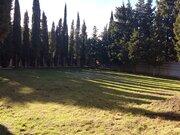 Продажа ровного земельного участка в элитном пригороде Ялты - Фото 4
