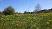 Можайское ш. 100 км от МКАД, Павлищево, Участок 20 сот. - Фото 4