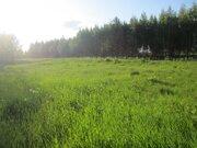 Продам земельный участок 12 сот. в д. Новые Кузьмёнки, Серп. р-на - Фото 4