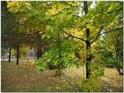 Прекрасный участок 12 соток для вашего дома в Новоглаголево !