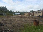 Отдельно стоящее здание 1143 м2 с жд тупиком., Продажа складов в Ломоносове, ID объекта - 900242275 - Фото 4