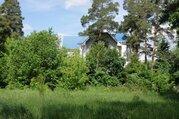 Участок 6 сот с вековыми соснами в Расторгуево с коммуникациями - Фото 5