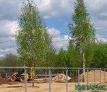 Продается зем. участок в СНТ Кривское 12 соток - Фото 3