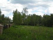 Лесной участок Новорижское шоссе 33 км, Земельные участки Писково, Истринский район, ID объекта - 201129878 - Фото 34