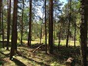 Лесной участок 12 соток ИЖС