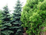 Челябинск, Продажа домов и коттеджей в Челябинске, ID объекта - 502707397 - Фото 3