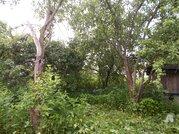 Участок с домом в деревне Глухово - Фото 2