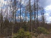 Лесной участок в коттеджном поселке 12 соток, со всеми оплаченными . - Фото 1