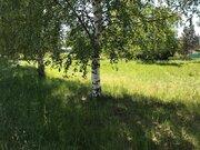 Участок на берегу р. Волга, д. Терехово - Фото 3
