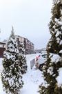 3 800 000 Руб., Однокомнатная квартира с видом на лес в Расторгуево, Продажа квартир в Видном, ID объекта - 325506912 - Фото 17