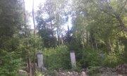 Уникальный лесной участок на берегу в стародачном поселке Мозжинка - Фото 2