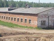 Фермерское хозяйство в Удмуртии - Фото 4