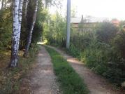 Участок с лесными деревьями 6 соток в с. Талеж - Фото 3