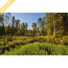 Продажа земельного участка 13 соток, в Университетском городке - Фото 3