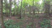Продаю участок 30 соток в лесу, Дмитровское шоссе - Фото 4