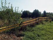 Продается земельный участок, с. Воскресеновка, ул. Ключевского - Фото 3