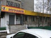Продажа торгового помещения, Ванино, Ванинский район, Ул. Карпатская - Фото 2