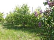 Продажа участка, Гнездилово, Рамонский район, Ул. Донская - Фото 2