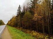Новинка рынка недвижимости, собственный лес, 13 Га. - Фото 4